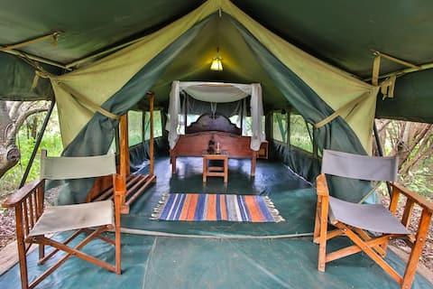 Cozy Aruba  bush tent at Masai Mara / Talek river