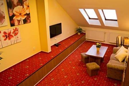Apartmány Holiday - třílůžkový apartmán (č. 1) - Třebíč - Bed & Breakfast