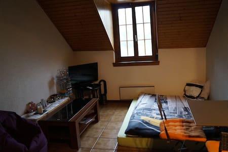 Chambre au coeur de Fribourg - Apartment