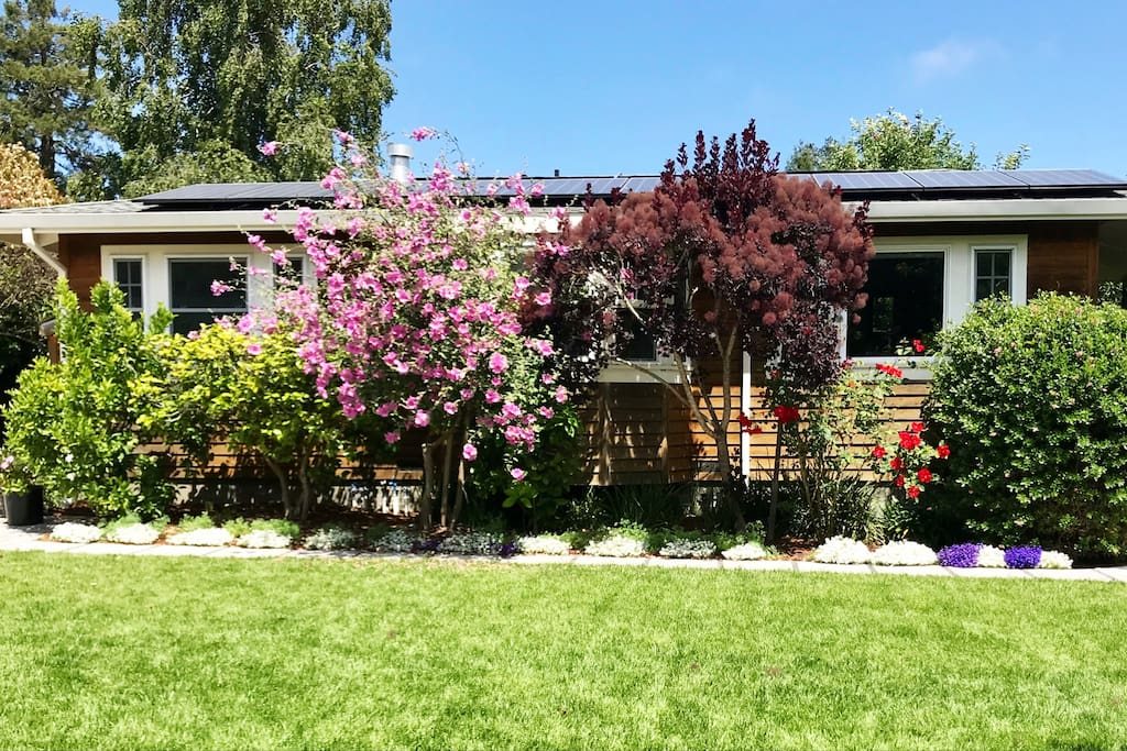 muslim singles in mill valley Mill valley california, i am looking for a partner, friend and companion to share adventures, travel, good food and wine and lasting memories like everyone over 30 years of age i have some small baggage, but i am n.