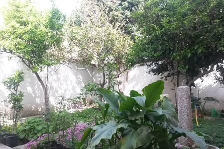 Luminoso trilocale con giardino - Oristano