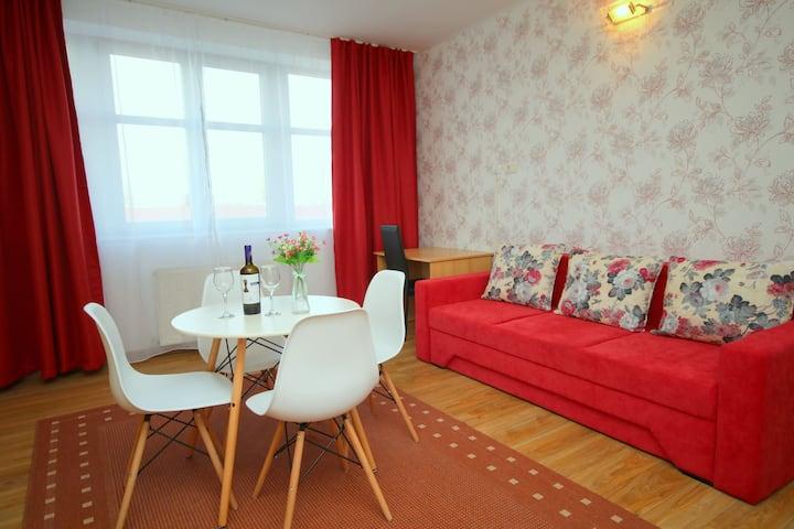 Cozy  Apartment - 36