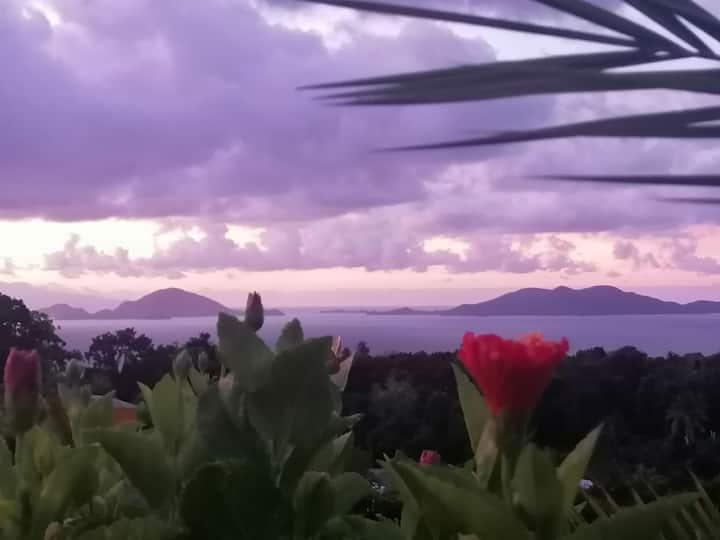 Le Bananier Rouge 2, vue mer face aux Saintes