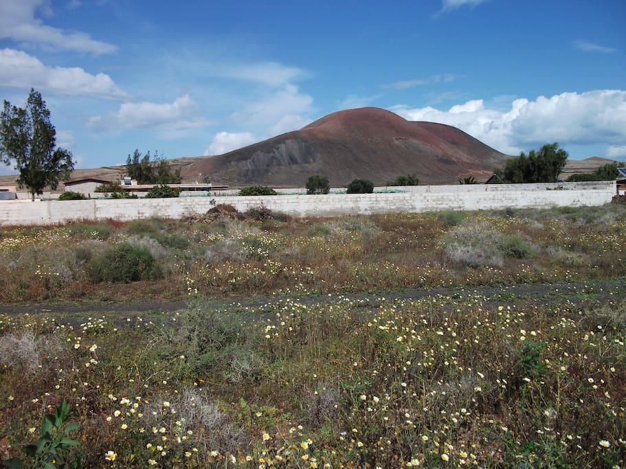 Vistas desde la propiedad hacia el volcán