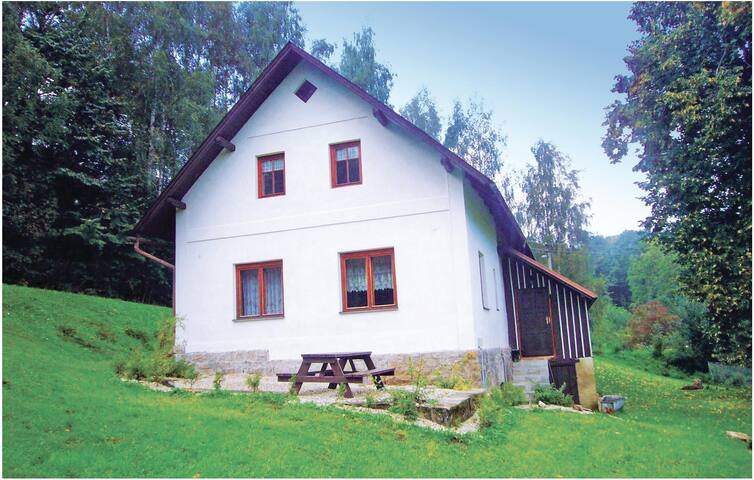 Holiday cottage with 4 bedrooms on 140 m² in Zlata Olesnice