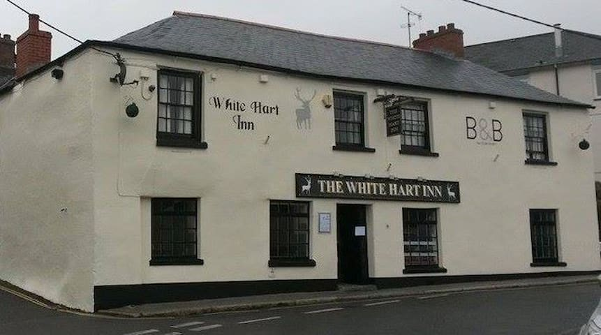 The White Hart Inn Room 5 single