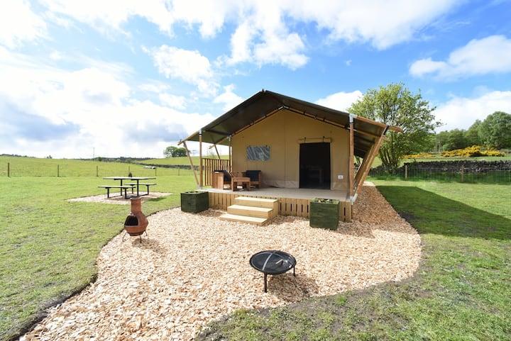 Luxury Safari Tent - Jennifer, in Central Scotland