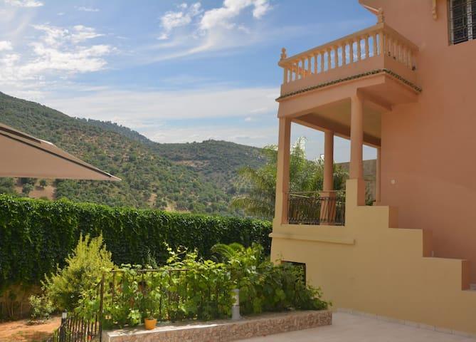 Façade est , plus loin la montagne d'oliviers.