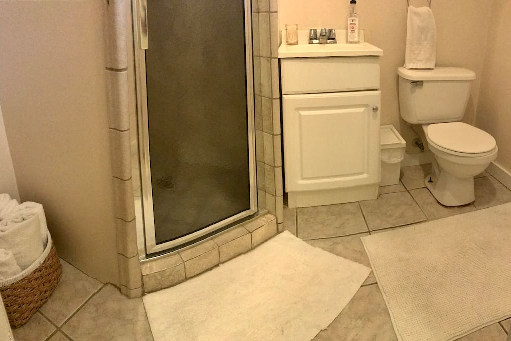 Private Full Bathroom with standing shower