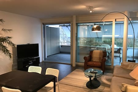 Entire brand new Apt in Vitznau - Vitznau - Appartement