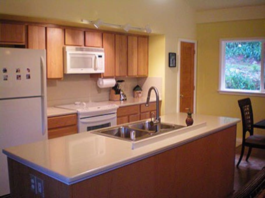 A modern, fully-equipped kitchen