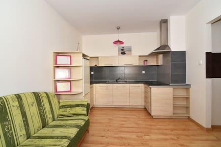 Komfortowy nowy apartament w spokojnej okolicy - Toruń - Huoneisto