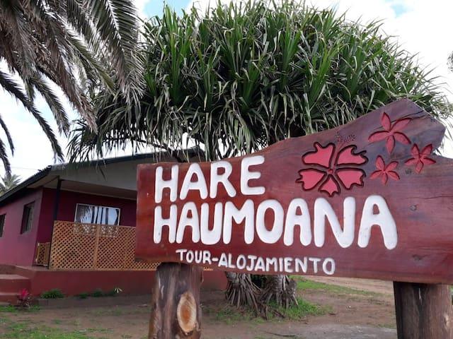 Haumoana Tour & Alojamiento