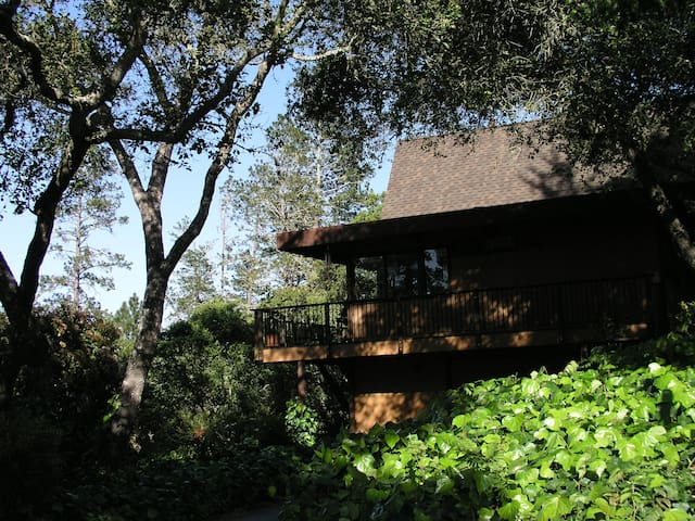 Santa Cruz area serene retreat, sleeps 8