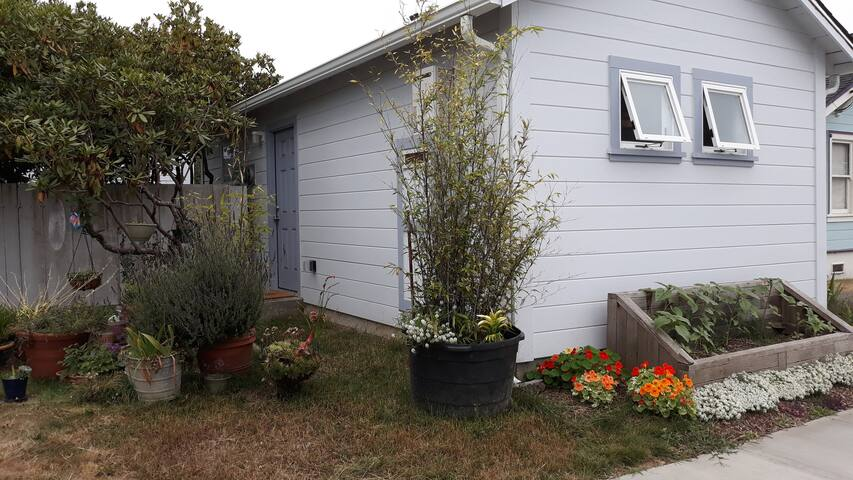 AnB's Green Friendly Cozy Carriage House