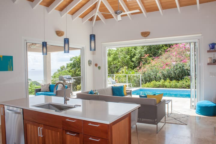 Modern&Luxury Pool House at Seas The Day Villa - Cruz Bay - Villa
