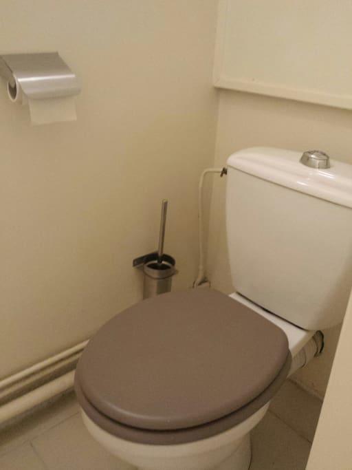Wc avec double chasse, produit wc, 2 rouleaux de papier toilette â votre arrivée, balai de nettoyage.  Le chauffe-eau est au-dessus des Wcs.