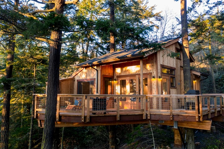 Fort Ebey Treehouse