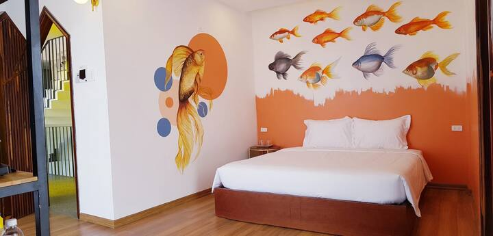 Home Goldfish!!! Free Breakfast & Drinks