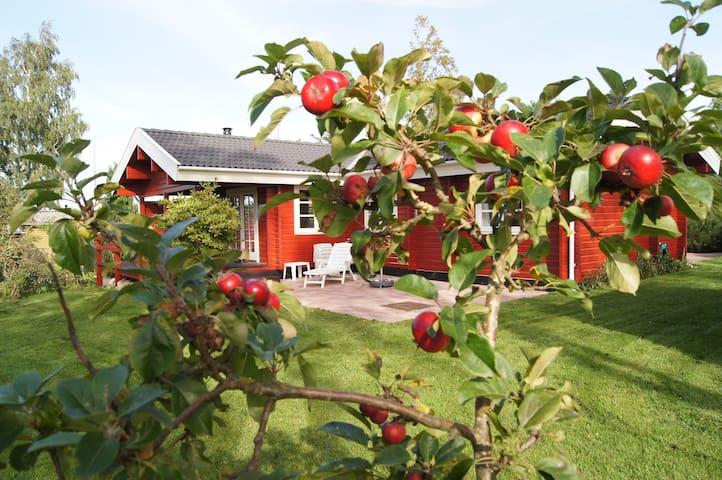 Et RIGTIGT sommerhus - Kirke Hyllinge - Hytte