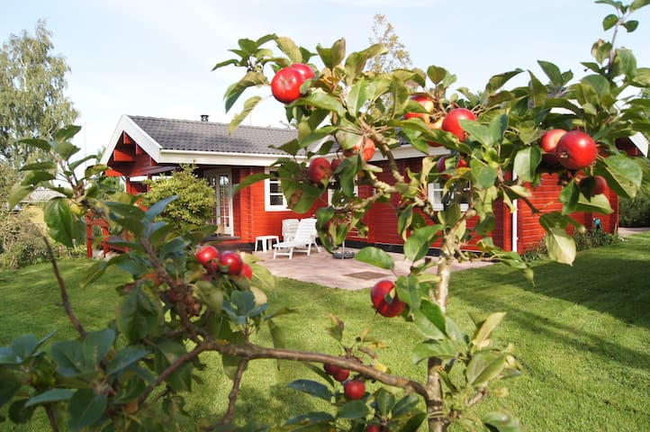Et RIGTIGT sommerhus - Kirke Hyllinge - Srub
