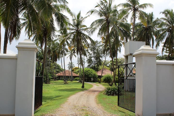Leana Lagoon Cottages - Negombo