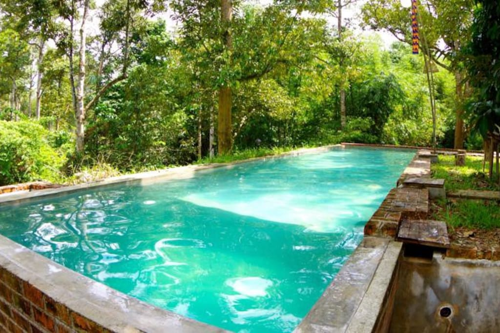 Swimming pool - Surround by the nature