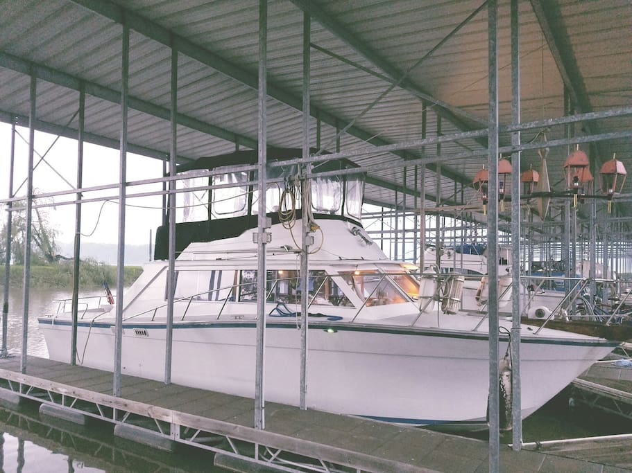 The Carla Diane 34 ft. Cabin cruiser