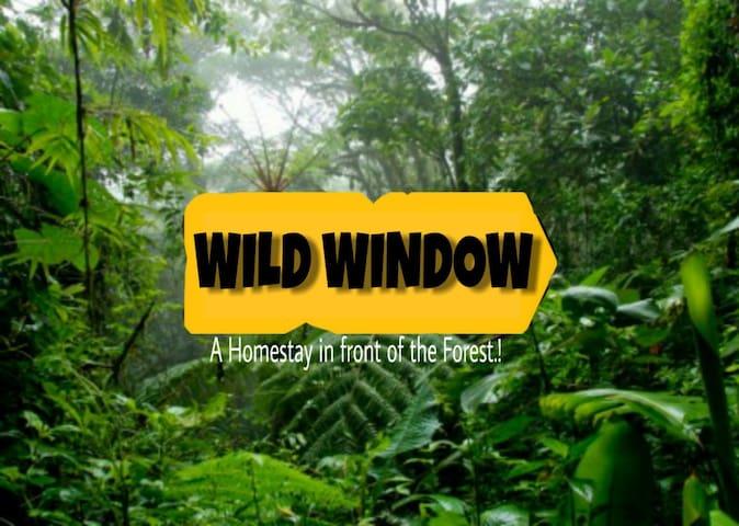 WILD WINDOW -Double bed with Diwan-Thekkady