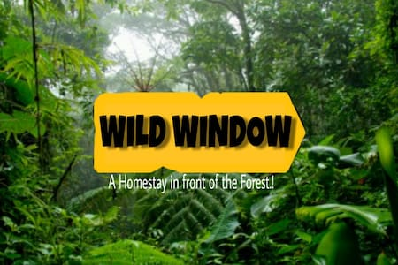 WILD WINDOW Homestay -Family Room W/Diwan Thekkady