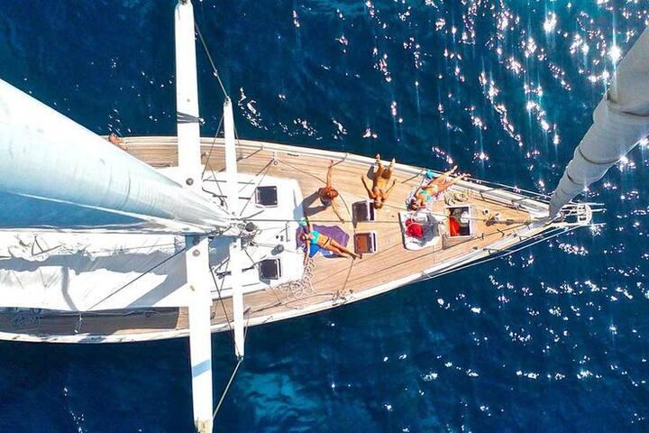 Парусная яхта F45