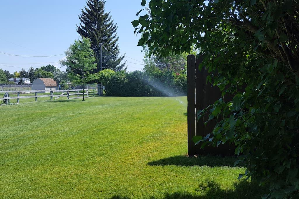 Backyard Additional View