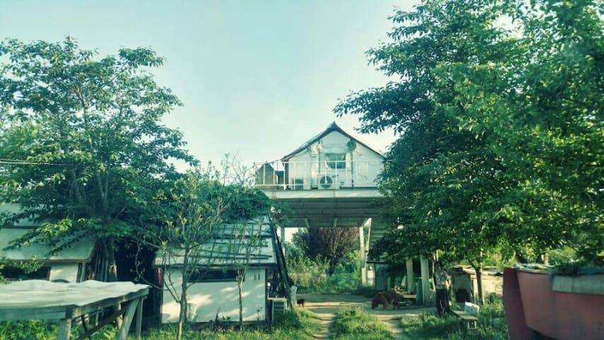 둥가팜/지하철1호선노포역, 노포종합버스터미날 인근의 자연속 둥가팜(농장/400평)