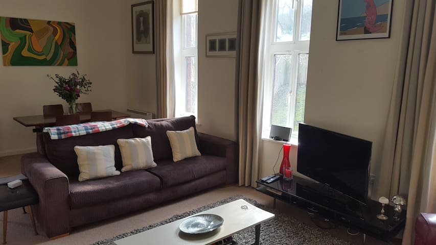Beautiful Apartment In Old Victorian Hospital - Sheffield  - Apartment