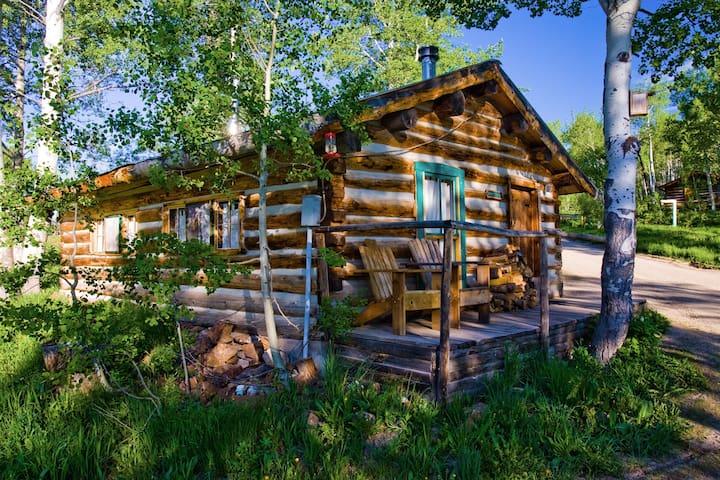 Porcupine Cabin - A Classy-Rustic Gem
