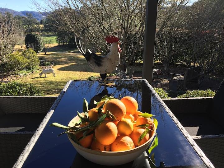 Nanny Goat Hill, spacious Kangaroo Valley escape