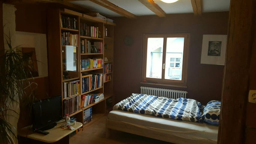 Comfortable room with some luxury... - Dübendorf - Maison