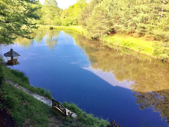 Hidden Pond near Asheville