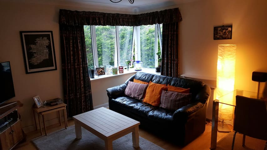 Great Double Bedroom in fantastic location :) - Dublin - Apartment