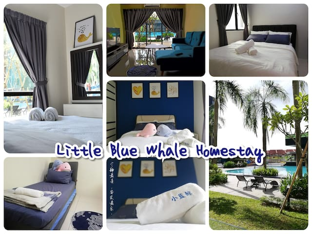 Water Park~Little Blue Whale Homestay 小蓝鲸民宿 (8pax)