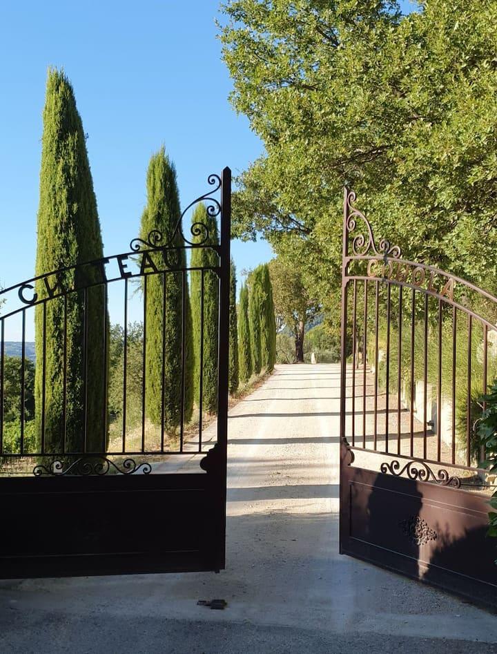 Exceptionnel,chambre d'hôtes dans domaine viticole