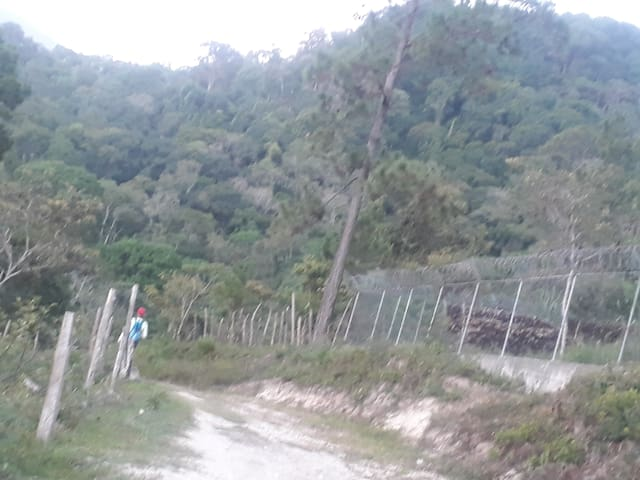 Casa campo, rainforest, rivers, coffe plantations.