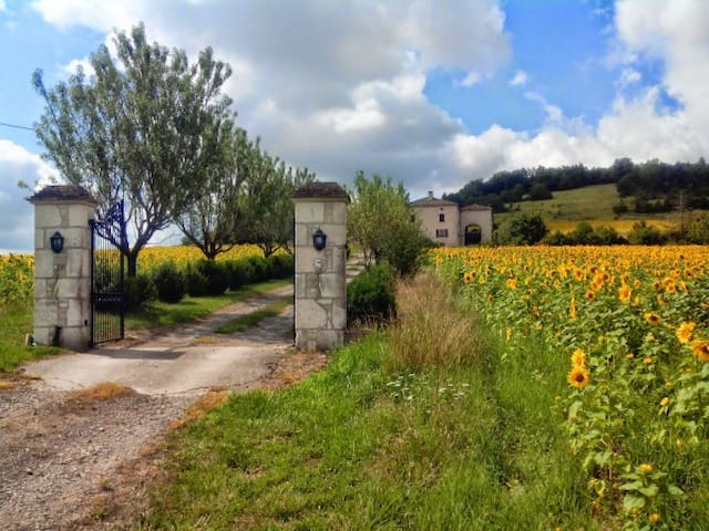 Charming Farm with great view, Pool and Horses - Cordes-sur-Ciel - House