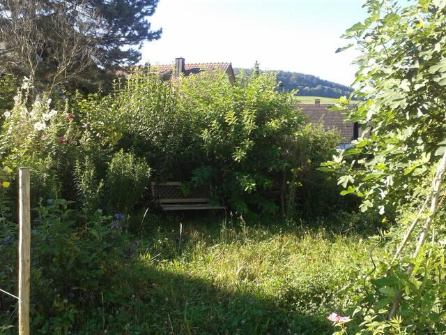 Citynah,ländlich am Fuße des Schönberges,Frühstück - Ebringen