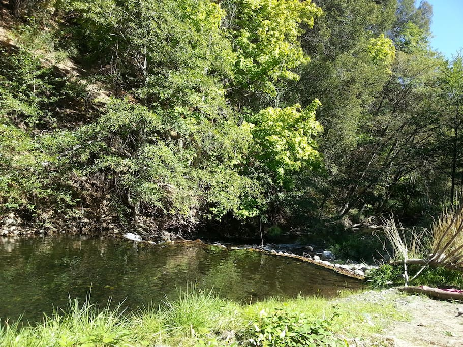 Swimming hole to cool off in summer, bird watch in spring or view wild Salmon spawning in fall