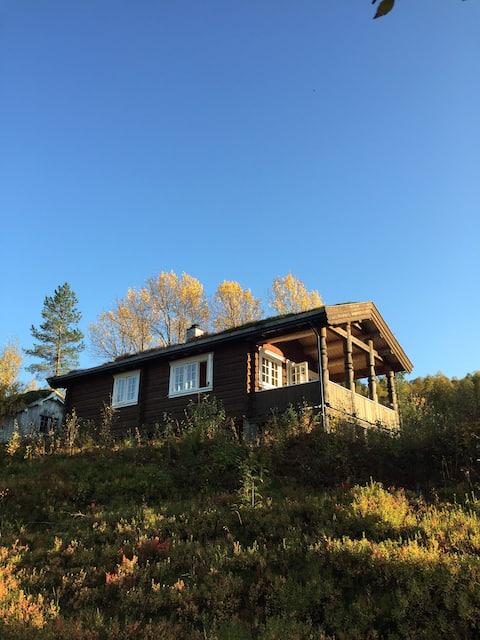 Tømmerhytte i Folddalen, Rindal
