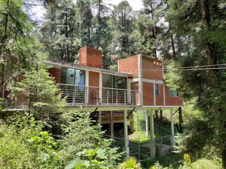 Casa de campo Real del Bosque