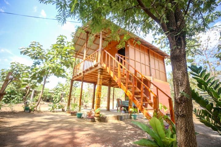 Neverbeen to Sigiriya Tree House