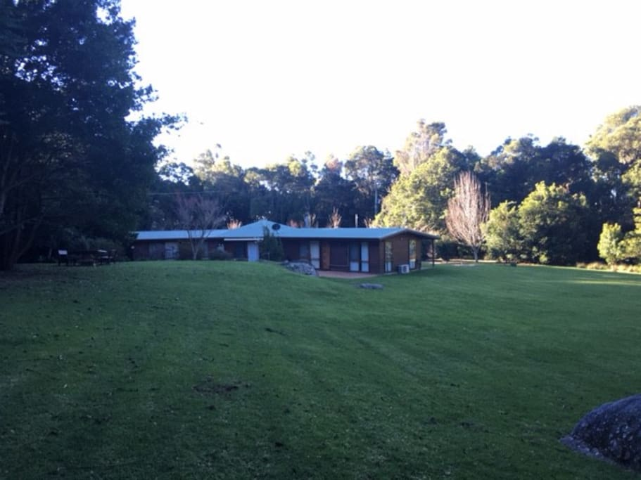 Large yard, great for kids or peaceful retreat