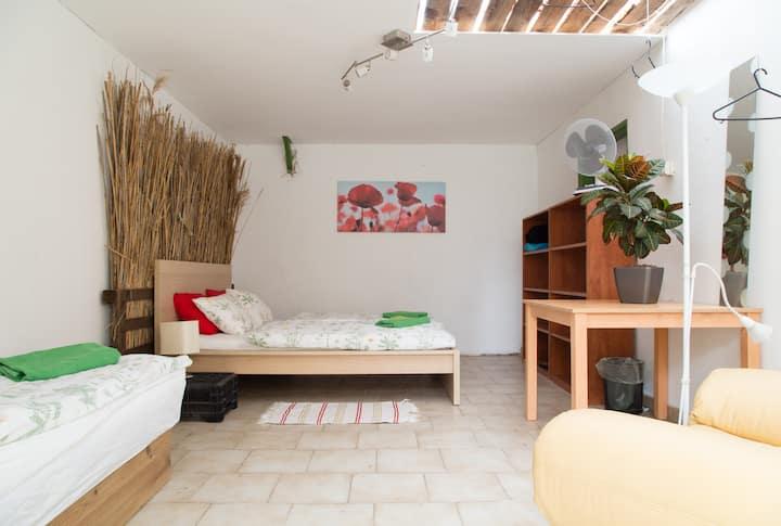 Rastlinky Greenhouse Guestroom 3